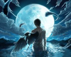 broken-wing-magical-creatures-40164034-500-400